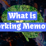 what is working memory